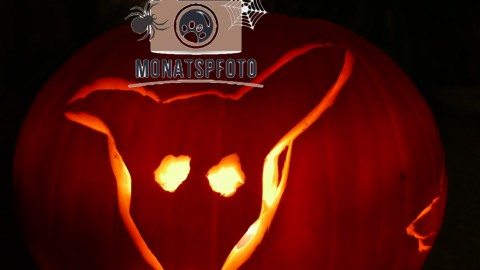 Monatspfoto: Halloween
