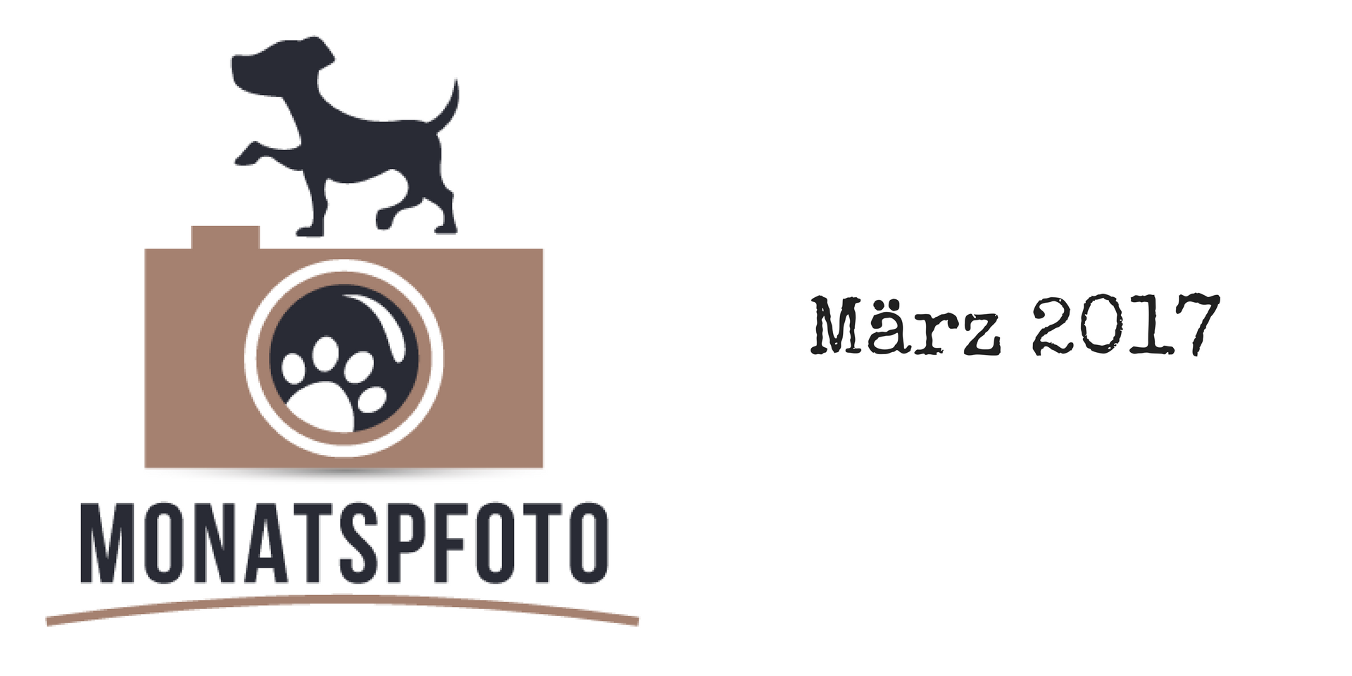 Monatspfoto März 2017 miDoggy Blog Community für Hunde