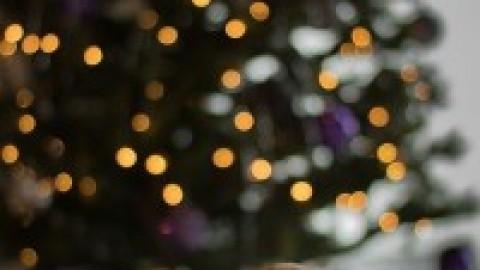 Monatspfoto – Dezember, Morgen wirds was geben