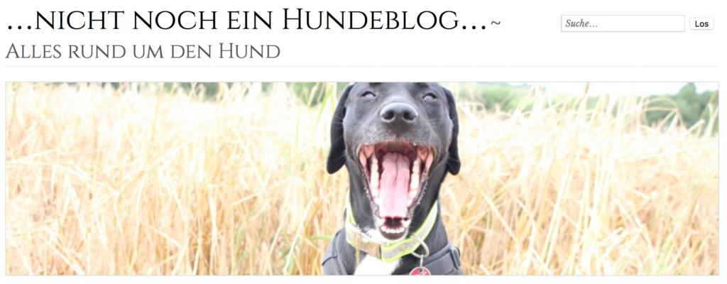 nicht-noch-ein-hundeblog-der-woche-midoggy
