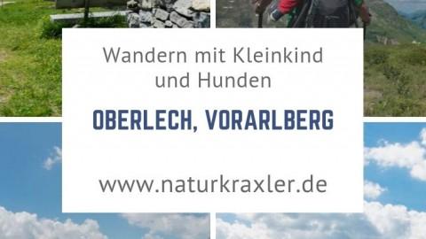 Wandern mit Kleinkind und Möpsen in Oberlech, Vorarlberg