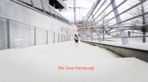 Hamburg HafenCity mit Hund
