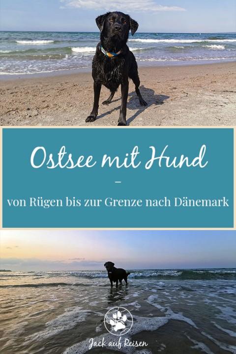 Ostsee mit Hund – von Rügen bis zur Grenze nach Dänemark