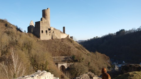 Wandern mit Hund –Monrealer Ritterschlag in der Eifel