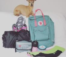 Checkliste für die nächste Wanderung mit Deinem Hund [Anzeige]