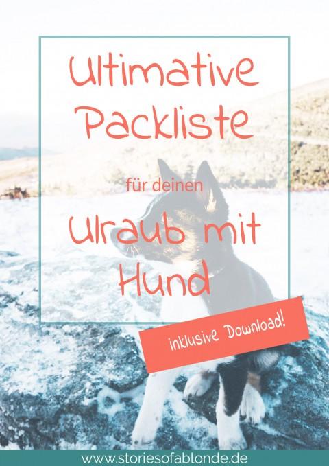 Urlaubs-Checkliste: Die ultimative Packliste für den Urlaub mit Hund