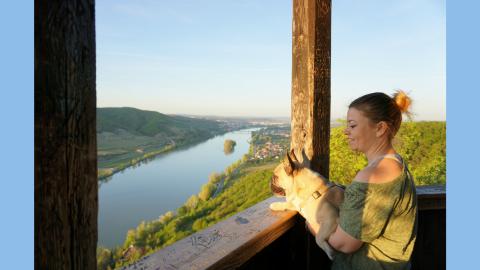 Pfoten On Tour in der Wachau