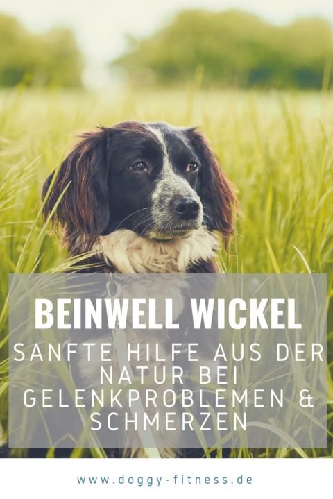 Beinwell Wickel – sanfte Hilfe aus der Natur bei Gelenkproblemen & Schmerzen