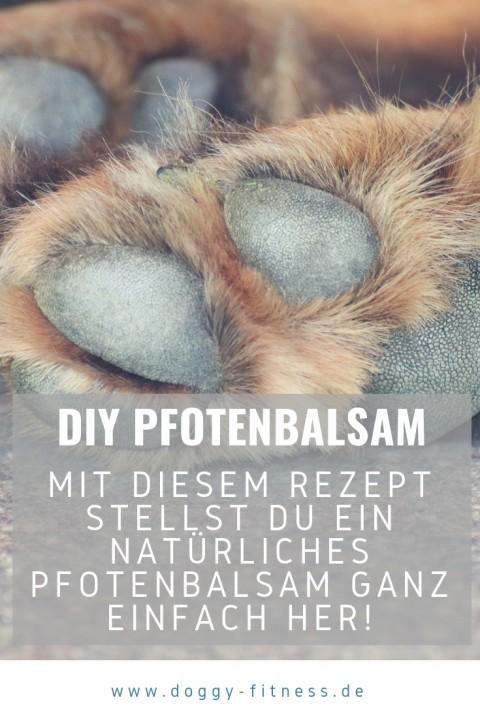 Pfotenbalsam selbst machen – schnelle Hilfe bei rissigen Hundepfoten