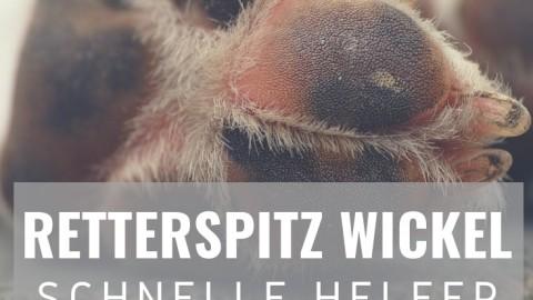 Retterspitz–Wickel – schneller Helfer gegen Gelenkschmerzen beim Hund