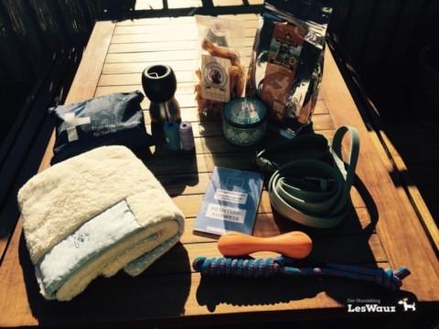 Urlaub mit Hund – was gehört alles auf die Packliste?