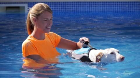 Die Schwimmweste – Sicherheit und Spaß im Wasser – Produkttest: Schwimmweste Alcott Mariner