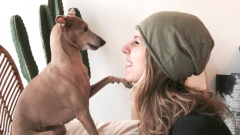 Produkttester für das Hundefutter von Magnusson gesucht [Anzeige]