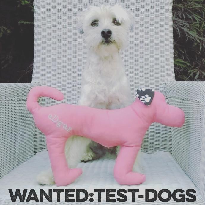 produkttester-gesucht-hunde-spielzeug-edgar-die-struppibande-glueckshund