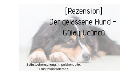 [Rezension] Der gelassene Hund – Gülay Ücüncü