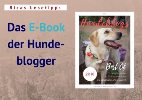 Ricas Lesetipp: Hundeblogs – Best of 2016