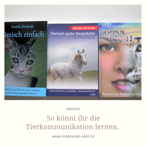 TIERKOMMUNIKATION – SO HELFEN BÜCHER BEIM LERNEN. | WERBUNG