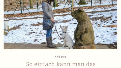 SO EINFACH KANN MAN DAS FEHLVERHALTEN SEINES HUNDES ÄNDERN. | ANZEIGE