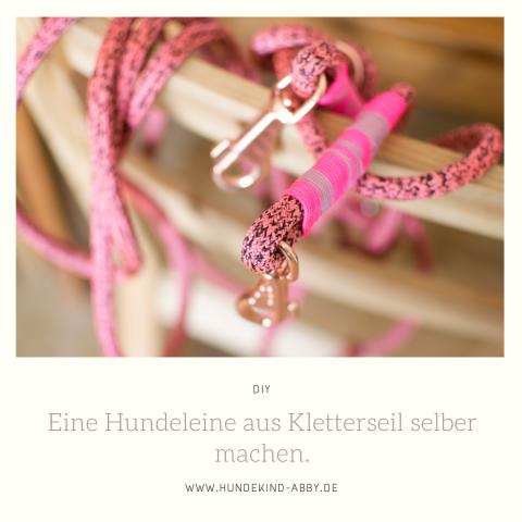 DIY: EINE HUNDELEINE EINFACH SELBER MACHEN || WERBUNG