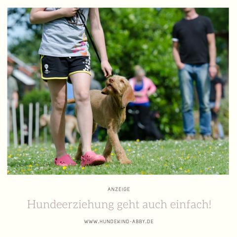 HUNDEERZIEHUNG GEHT AUCH EINFACH! | WERBUNG