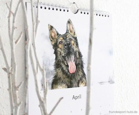 Schau' dir unseren Hundesport Kalender 2020 an!