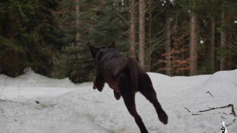 Schnee – Ein Zwiegespräch