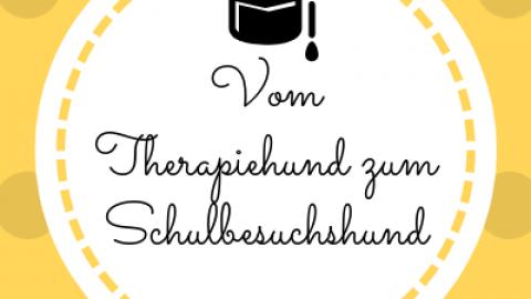 Vom Therapiehund zum Schulbesuchshund [Werbung]