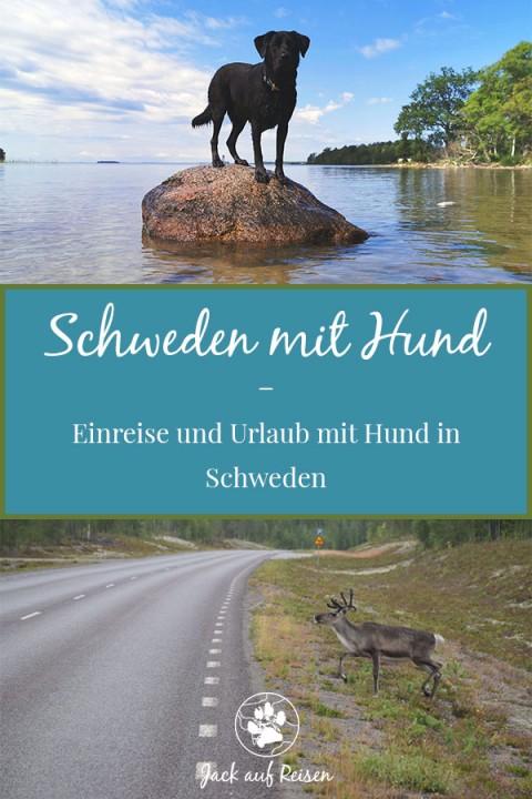 Schweden mit Hund – Einreise und Hundewiesen in Schweden