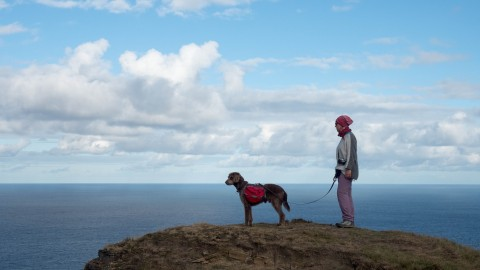 South West Coast Path mit Hund: Oh, you are a good boy!