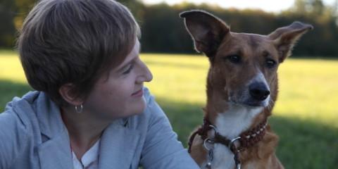 Die Grundlagen des Enneagramms für die Arbeit mit Mensch und Tier in 5 min erklärt