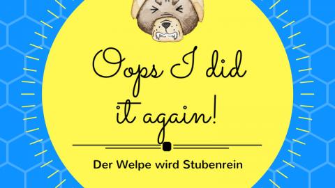 Oops I did it again! – Der Welpe wird stubenrein
