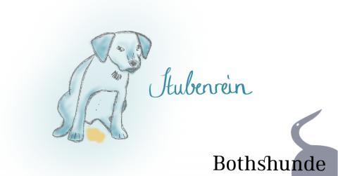 Töpfchentraining für den Hund – so klappt die Stubenreinheit