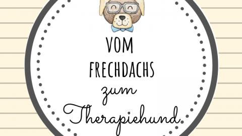 Vom Frechdachs zum Therapiehund [Werbung]