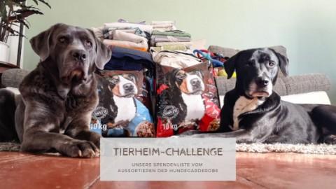 Tierheim-Challenge: Unsere Spende