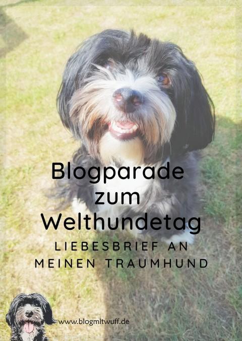 Blogparade zum Welthundetag – Liebesbrief an meinen Traumhund