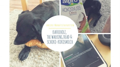 KAFFEEHOLZ, THE WALKING DEAD & SCHOKO-KOKOSMILCH – UNSERE FAVORITEN IM OKTOBER