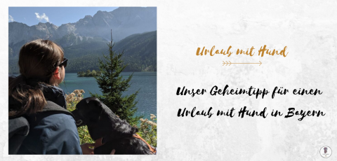Urlaub mit Hund in Bayern – schöne Ausflugsziele und Geheimtipp