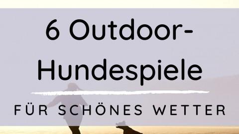6 Outdoor Hundespiele für schönes Wetter
