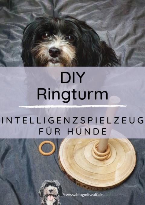 DIY Ringturm