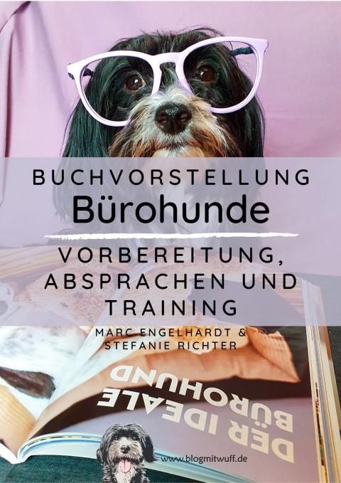 Werbung | Bürohunde – Vorbereitung, Absprachen und Training
