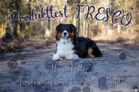 [Produkttest] Hundefutter von FRESCO im Test