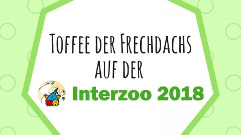 Toffee der Frechdachs auf der Interzoo 2018 [Werbung enthalten]