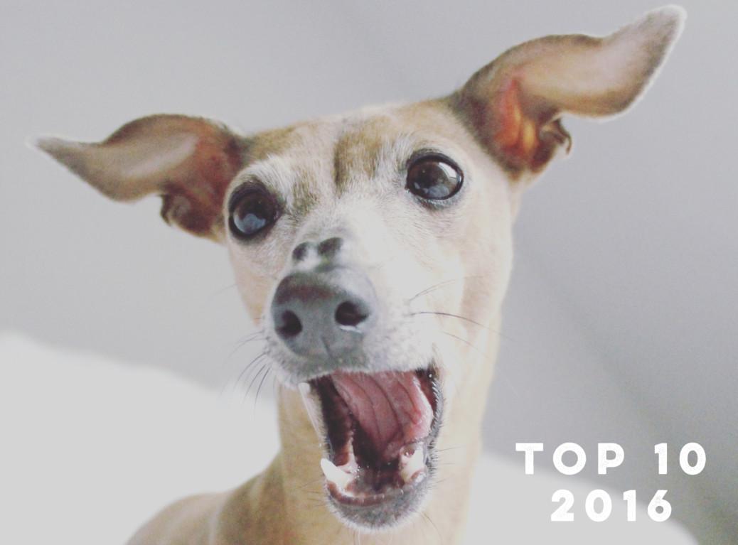 Top 10 Beiträge 2016