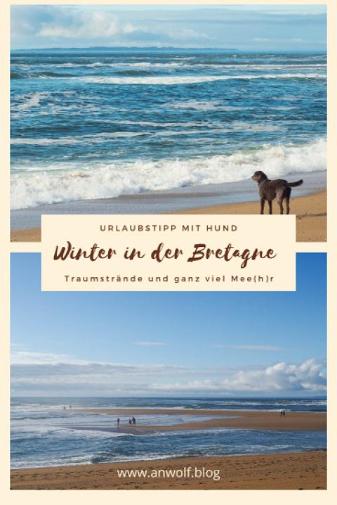 Winter in der Bretagne – Urlaubstipp mit Hund