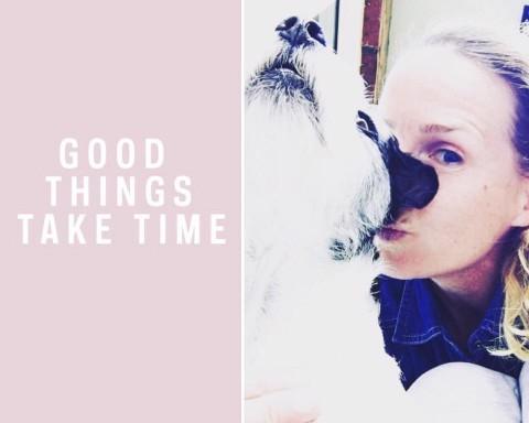 Umzug mit Hund – Augen zu und durch