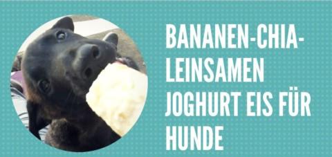 Bananen-Chia-Leinsamen Joghurt Eis