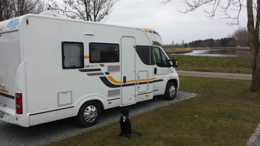Wohnmobil mit Hund Erfahrungen
