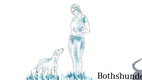 Meine 5 besten Tipps fürs Hundetraining