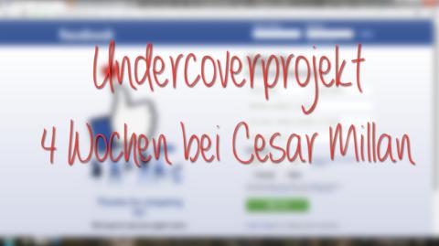 Cesar Millan – Mein 4 Wochen Undercoverprojekt