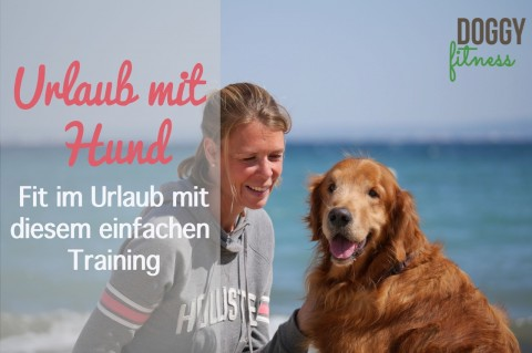 Urlaub mit Hund – Fit im Urlaub mit diesem einfachen Training! (Anzeige)
